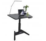 Стол для инвалидов с микролифтом ZWE0112 на одной ножке